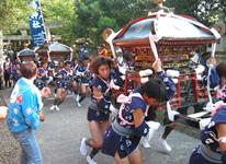 写真:真鍋島の走り御輿