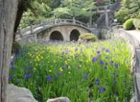 写真:菅原神社