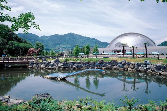 写真:笠岡市立カブトガニ博物館
