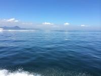 写真:白石島港