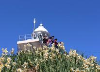 写真笠岡市観光連盟主催のツアー情報