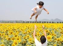 写真:ひまわりフォトコンテスト2020